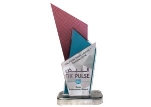 Dubai South Award 2016
