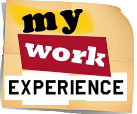 my-work-experience